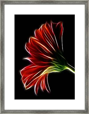 Framed Print featuring the photograph Simplicity by Joetta West