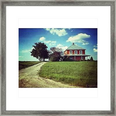 Simplicity Framed Print by Natasha Marco