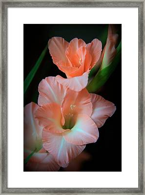 Simply Glad Framed Print by Karen Wiles