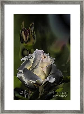 Sinful Rose Framed Print by Leo Symon