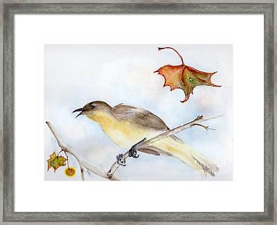 Singing Bird In Sycamore Framed Print