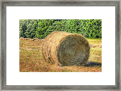 Single Bale Framed Print by Barry Jones