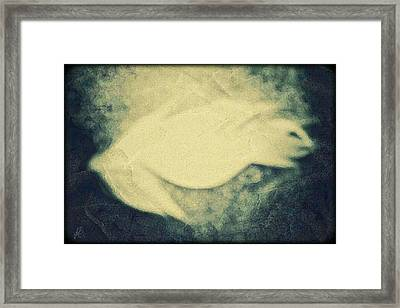 Single White Feather Framed Print by Jenn Bodro