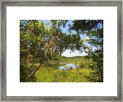 Sink Hole Lake Framed Print by Luis Lugo