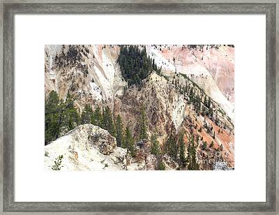 Framed Print featuring the photograph Sit For A Spell At Grand Canyon In Yellowstone by Living Color Photography Lorraine Lynch