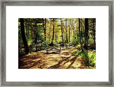 Sit. Framed Print