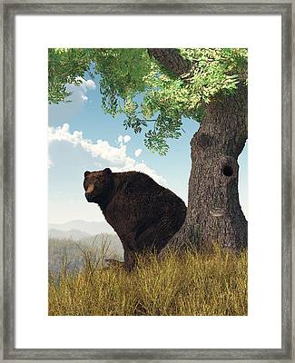 Sitting Bear Framed Print by Daniel Eskridge
