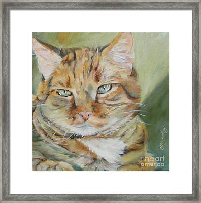 Sitting In The Sunbeam Framed Print