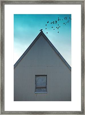 Framed Print featuring the photograph Sitting On The Peak by Kathleen Grace