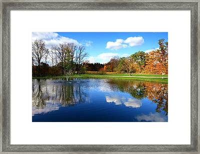 Six Mile Vineyard Framed Print by Paul Ge
