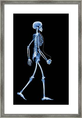 Skeleton With An Ipod Framed Print by D. Roberts