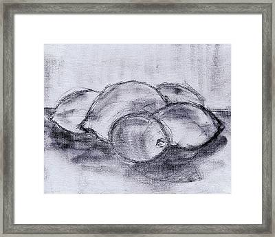 Sketch - Lemons And Limes Framed Print by Kamil Swiatek