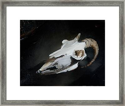 Skull Of Goat Framed Print