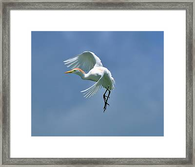 Sky Dancing Framed Print