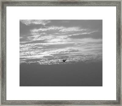 Sky High Framed Print by Prashant Ambastha