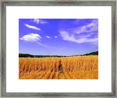 Sky Over The Field 3 Ae  Framed Print by Lyle Crump