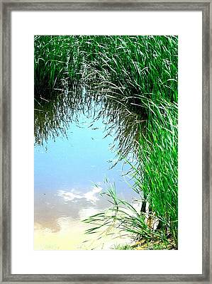 Sky Reflected Framed Print by Suzanne Fenster