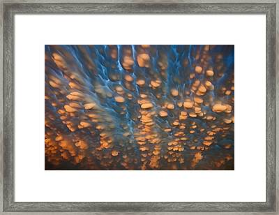 Sky Veins Framed Print by Chris Allington