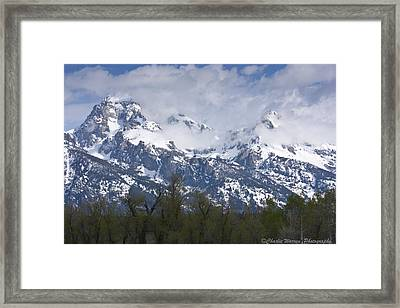Skyscapers Framed Print by Charles Warren