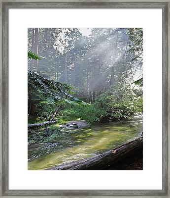 Slanting Sunlight On River Framed Print by Kirsten Giving