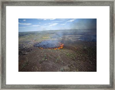 Slash And Burn Agriculture Framed Print by Alexis Rosenfeld