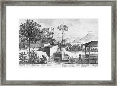 Slaves And Their Overseer Working Framed Print by Everett