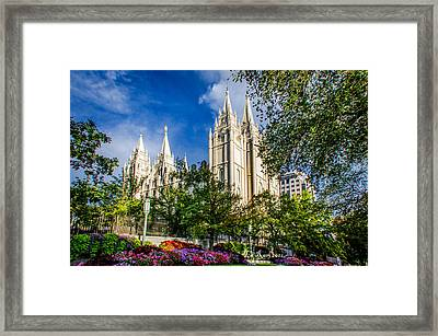 Slc Nw View Framed Print by La Rae  Roberts