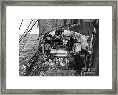 Sled Dogs On Deck Of Terra Nova, Scotts Framed Print by Photo Researchers