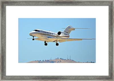 Sleek Aviator Framed Print by Fraida Gutovich