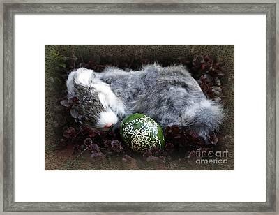 Sleeping Easter Bunny Framed Print by Danuta Bennett