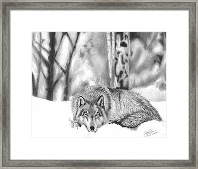Sleeping In The Snow Framed Print