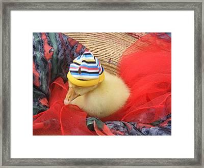 Framed Print featuring the painting Sleepy Dodo by Bogdan Floridana Oana