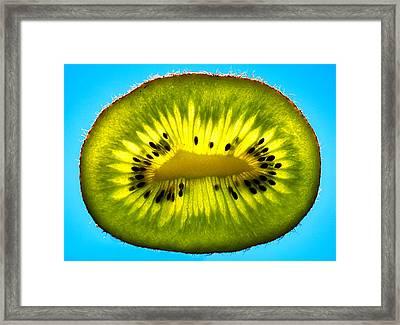 Slice Of Divine Green Kiwi Fruit Framed Print