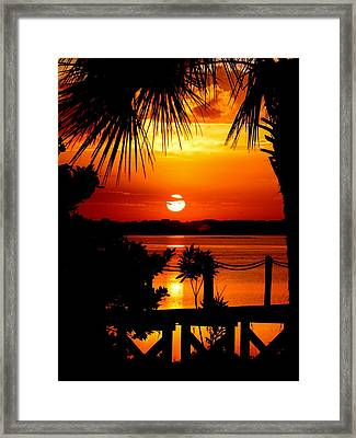 Slice Of Life Framed Print by Karen Wiles