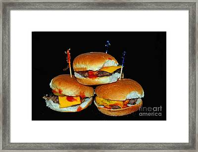 Framed Print featuring the photograph Sliders by Cindy Manero