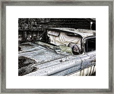Slimy Sue  Framed Print by Jerry Cordeiro
