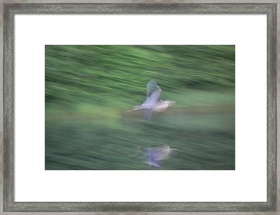 Slow Evening Shutter Framed Print