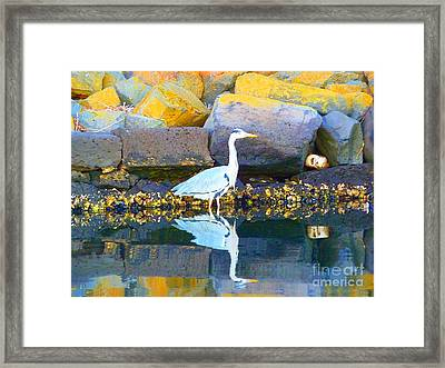 Slow Motion Framed Print by Rogerio Mariani