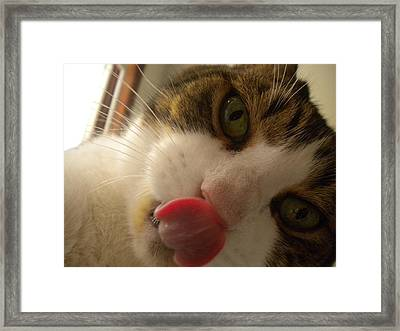 Slurpz Framed Print by Crespo
