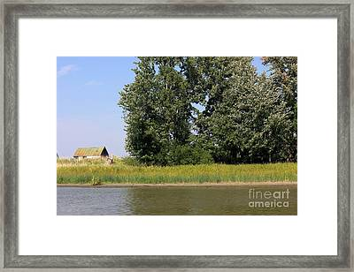 Small Barn Big Trees Framed Print by Sophie Vigneault