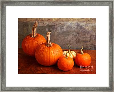 Framed Print featuring the photograph Small Decorative Pumpkins by Verena Matthew