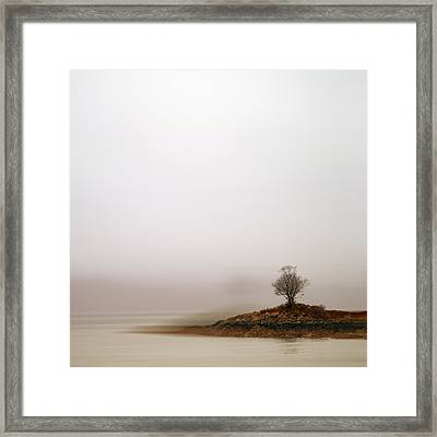Small Island With Lone Tree Framed Print by Andrew Lockie