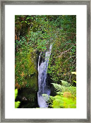 Small Waterfall Framed Print by Erica McLellan