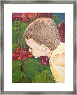 Smelling The Hydrangeas Framed Print