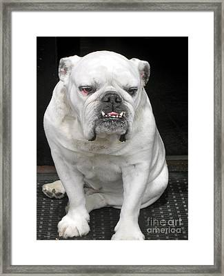 Smile Framed Print by Beth Saffer