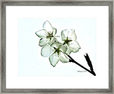 Smiles Framed Print by Rotaunja