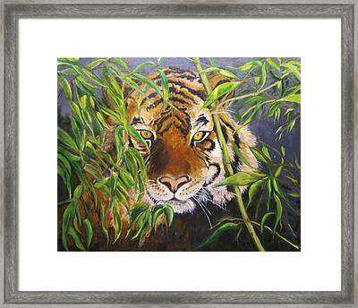 Smiling Tiger Framed Print by Maureen Pisano