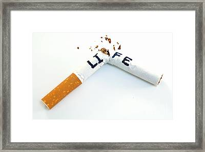 Smoking Shortens Life Framed Print by Blink Images