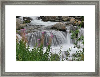 Framed Print featuring the photograph Smooth Move by Johanne Peale