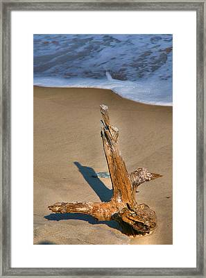 Snag And Surf II Framed Print by Steven Ainsworth